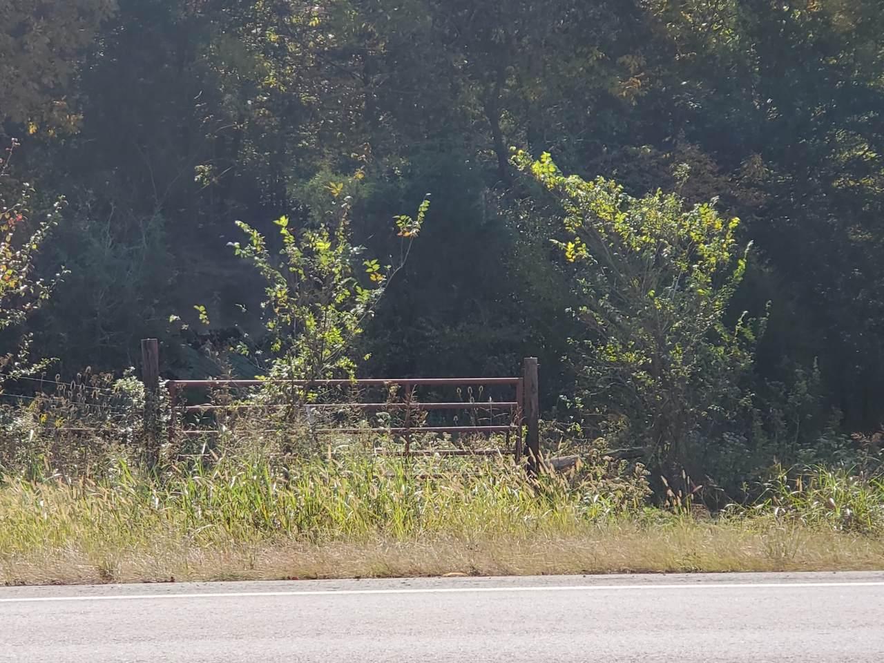 0 Lewisburg Hwy - Photo 1