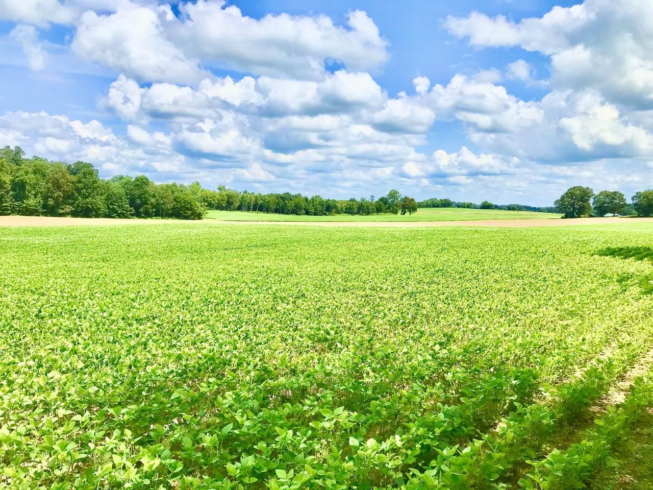 0 Swamp Rd - Photo 1