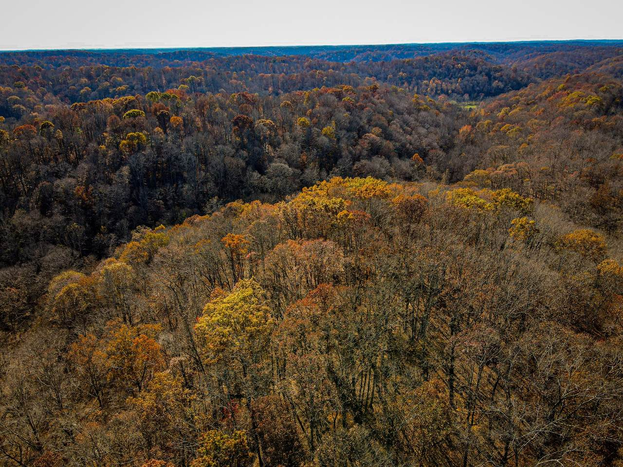 0 Natchez Trace Pkwy - Photo 1