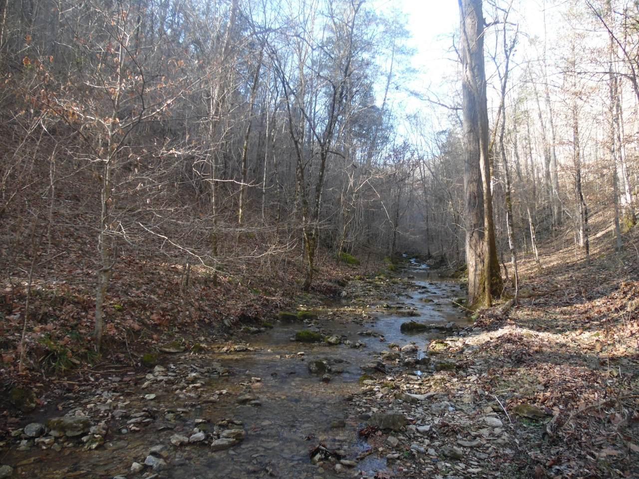0 Brimstone Creek Rd - Photo 1