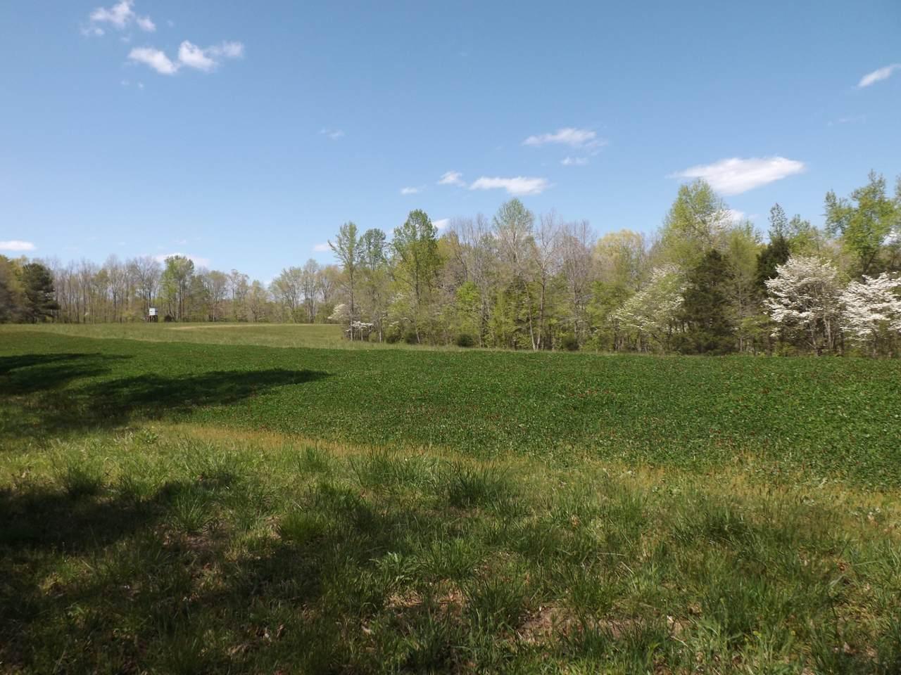 179 Anderson Creek Rd - Photo 1