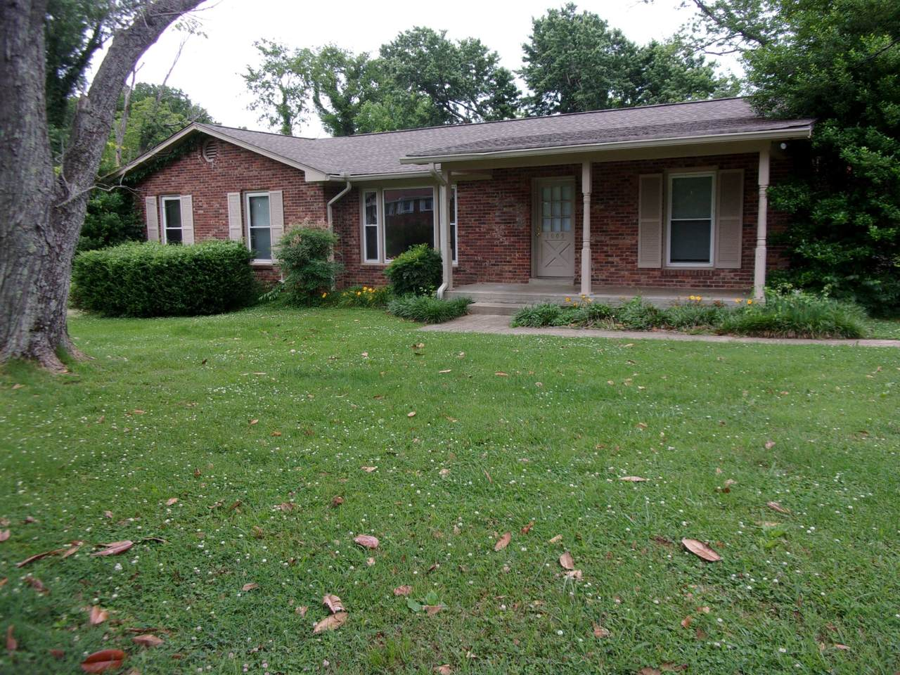 1009 Clearview Dr - Photo 1