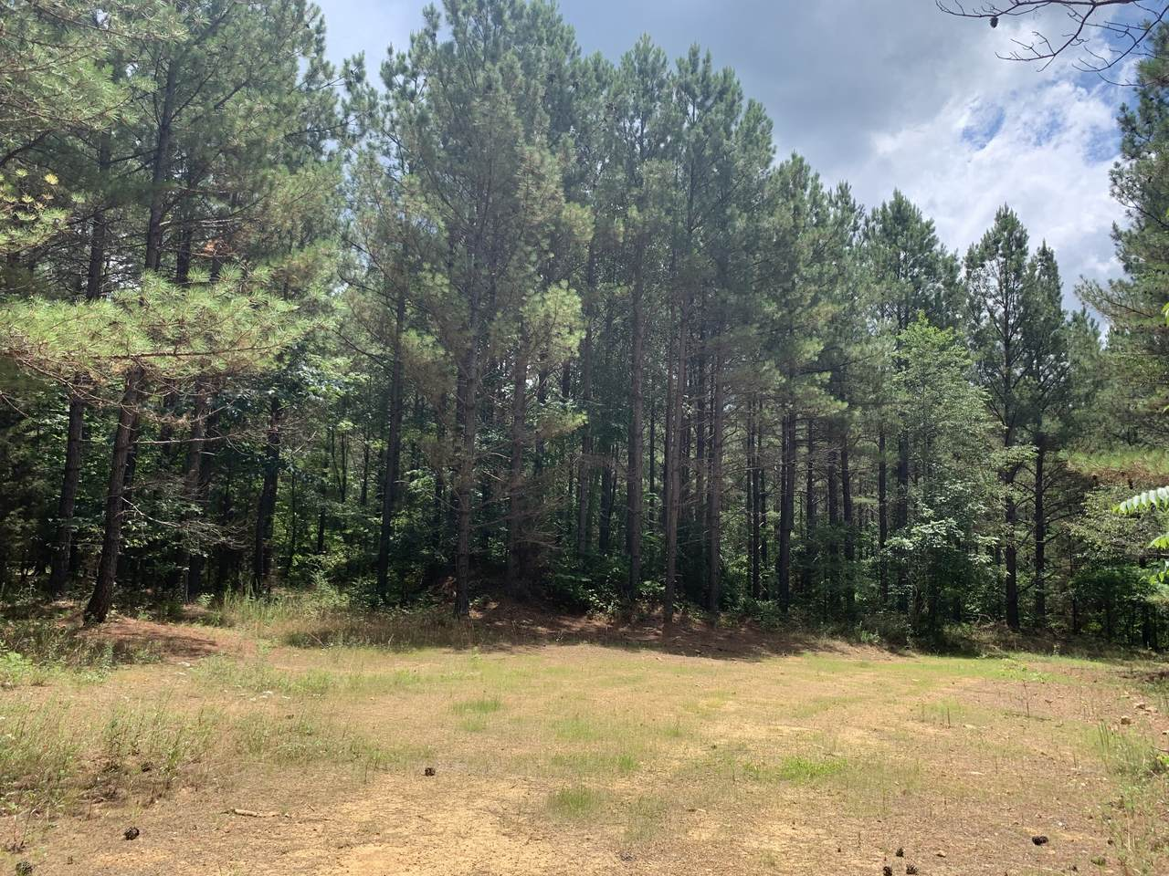 0 Hickory Trace Rd - Photo 1