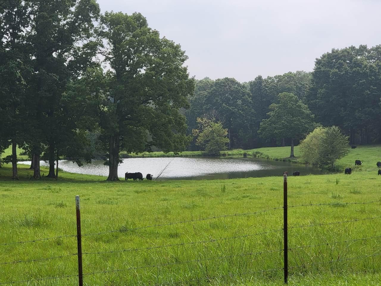 1677 Tenn Ridge Rd - Photo 1