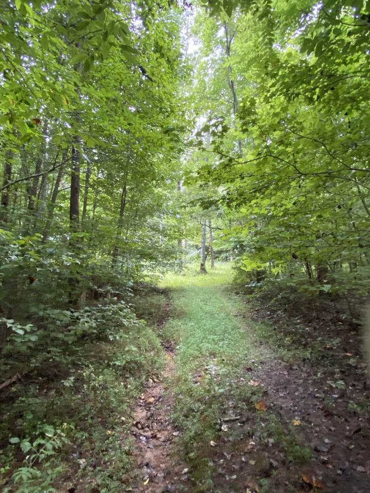 578 Mccord Hollow Rd - Photo 1
