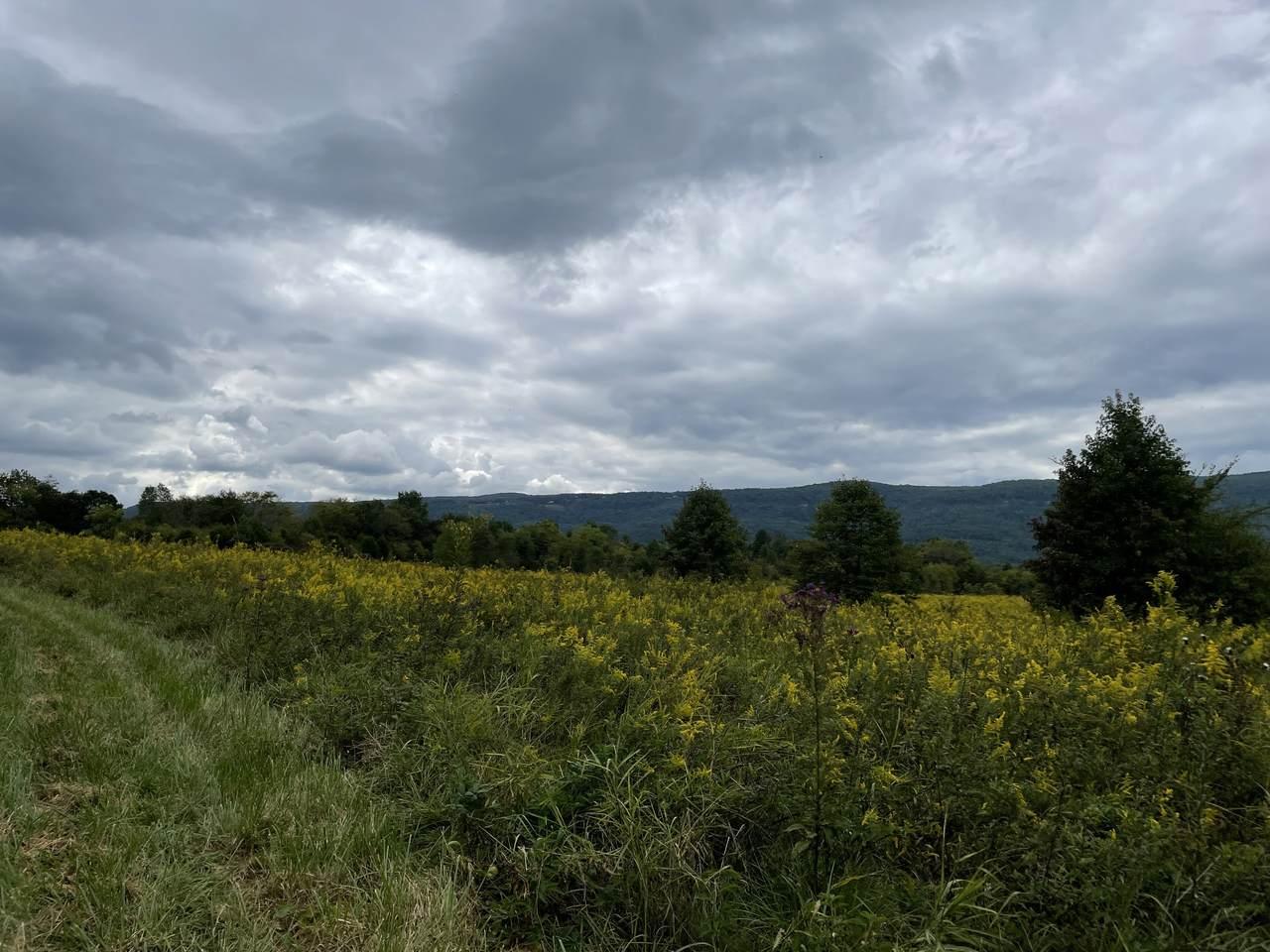 0 Sequatchie County Line - Photo 1