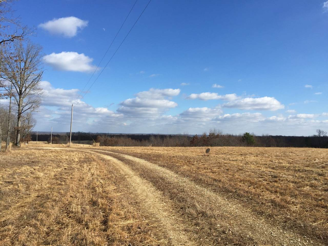 1600 Barren Hollow Rd - Photo 1