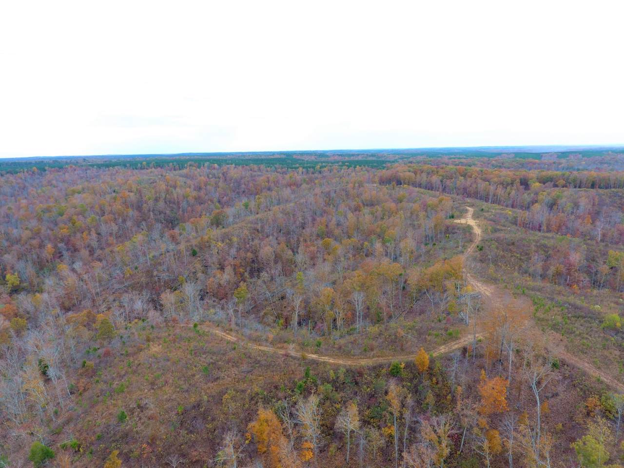 0 Mccord Hollow Rd - Photo 1