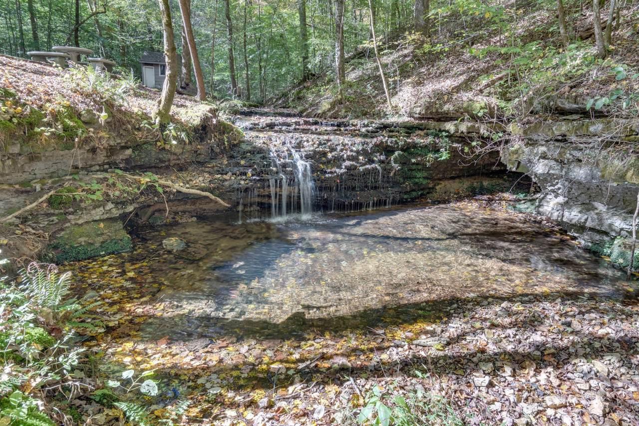 165 Timber Falls Ln - Photo 1