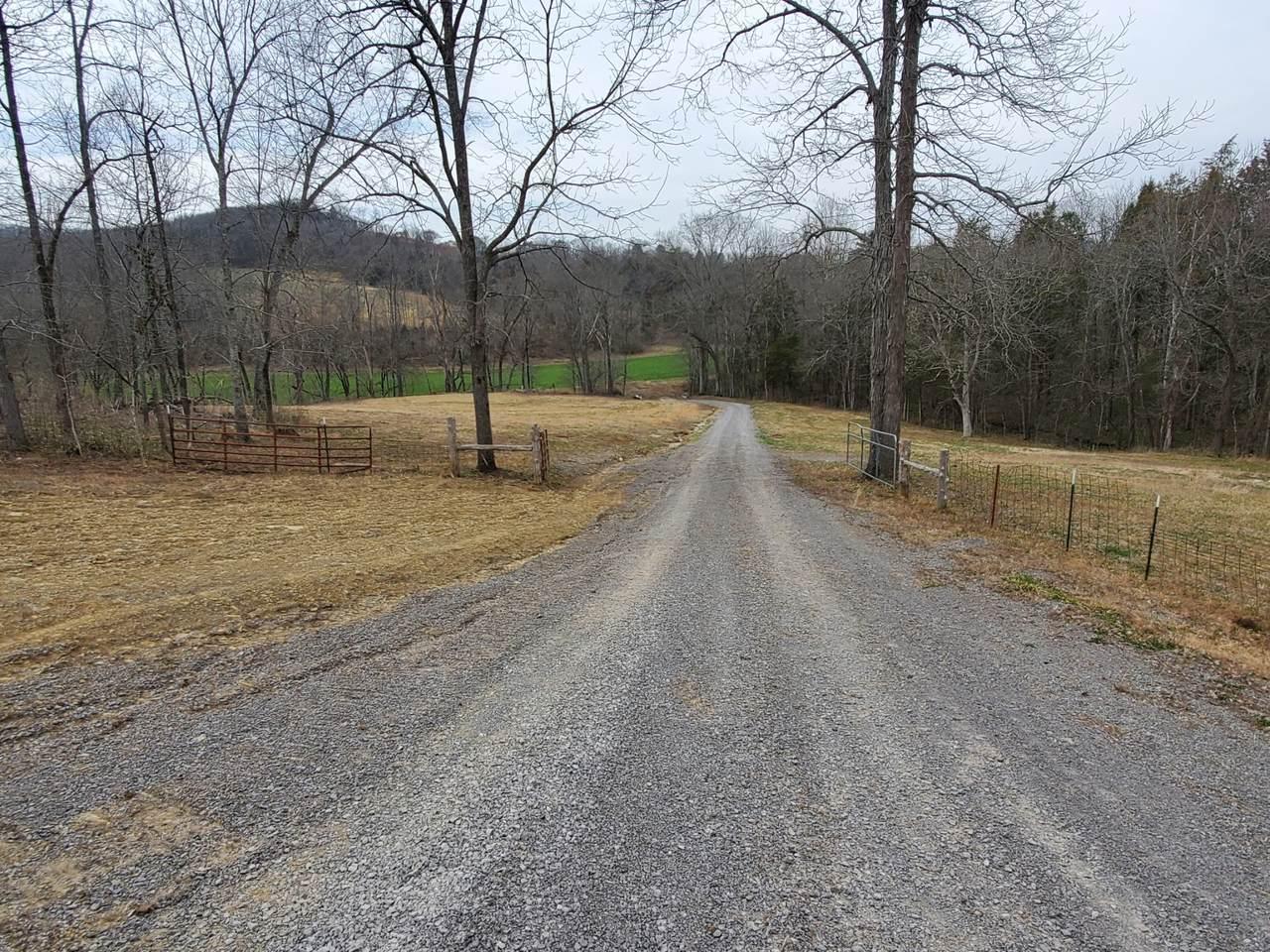 1 Hogans Creek Road - Photo 1