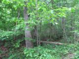 0 Roan Creek Rd - Photo 6