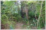 8519 Mccrory Ln - Photo 3