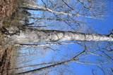 0 Dry Weakley Creek - Photo 7