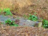 167 Lowery Cemetery Rd - Photo 6