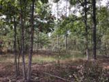 0 Sassafras Ridge Rd - Photo 5