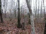 9 Backwoods Trails Lane - Photo 15