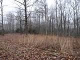 9 Backwoods Trails Lane - Photo 2