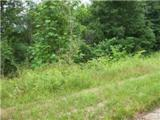 0 Parrish Hollow Road - Photo 2