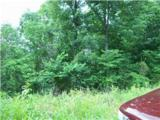 0 Parrish Hollow Road - Photo 4