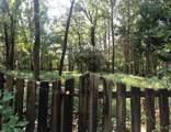 519 Hidden Hill Dr - Photo 12