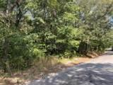 0 Turkey Creek Road - Photo 2
