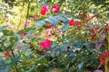 104 Garden View Ct - Photo 3