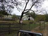 6195 Beech Hill Rd - Photo 5