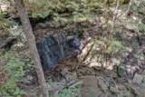 165 Timber Falls Ln - Photo 28