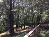 600 Snake Creek Loop - Photo 26