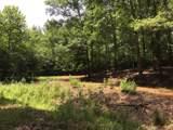 600 Snake Creek Loop - Photo 29