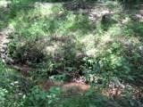 600 Snake Creek Loop - Photo 4