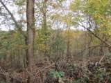 78 .62Ac Old Mill Hill Rd - Photo 12