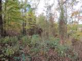 78 .62Ac Old Mill Hill Rd - Photo 13