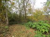 78 .62Ac Old Mill Hill Rd - Photo 10