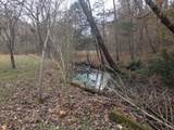 0 Capshaw Hollow Rd - Photo 8