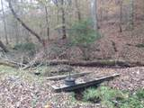 0 Capshaw Hollow Rd - Photo 9