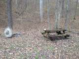 0 Capshaw Hollow Rd - Photo 10