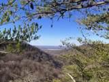 159 Little Trees Ramble - Photo 1