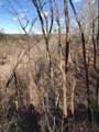 159 Little Trees Ramble - Photo 8
