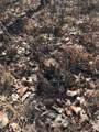 159 Little Trees Ramble - Photo 10