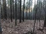 0 Hickory Trace - Photo 17