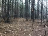 0 Hickory Trace - Photo 7