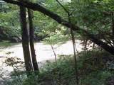0 Fallen Timber Lane - Photo 5