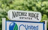 2 Natchez Ridge - Photo 6