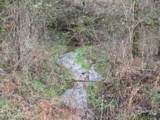 0 Brooks Bend Lane - Photo 7