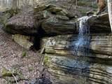 899 Buck Hollow Rd - Photo 4