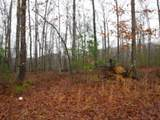 114 .34Ac Arrowhead Road - Photo 21