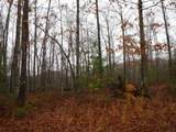 114 .34Ac Arrowhead Road - Photo 22