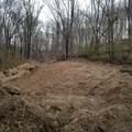 2969 Dry Branch Rd - Photo 1