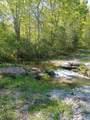 43 Bluff Woods - Photo 5